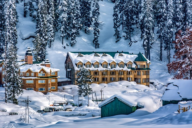 Vacation in Kashmir