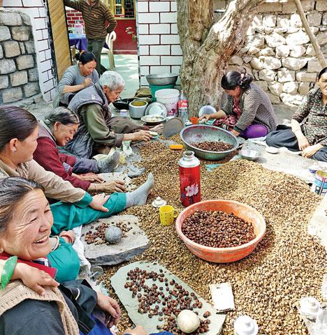 food-in-ladakh
