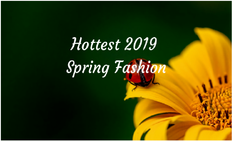 Hottest Spring Fashion 2019