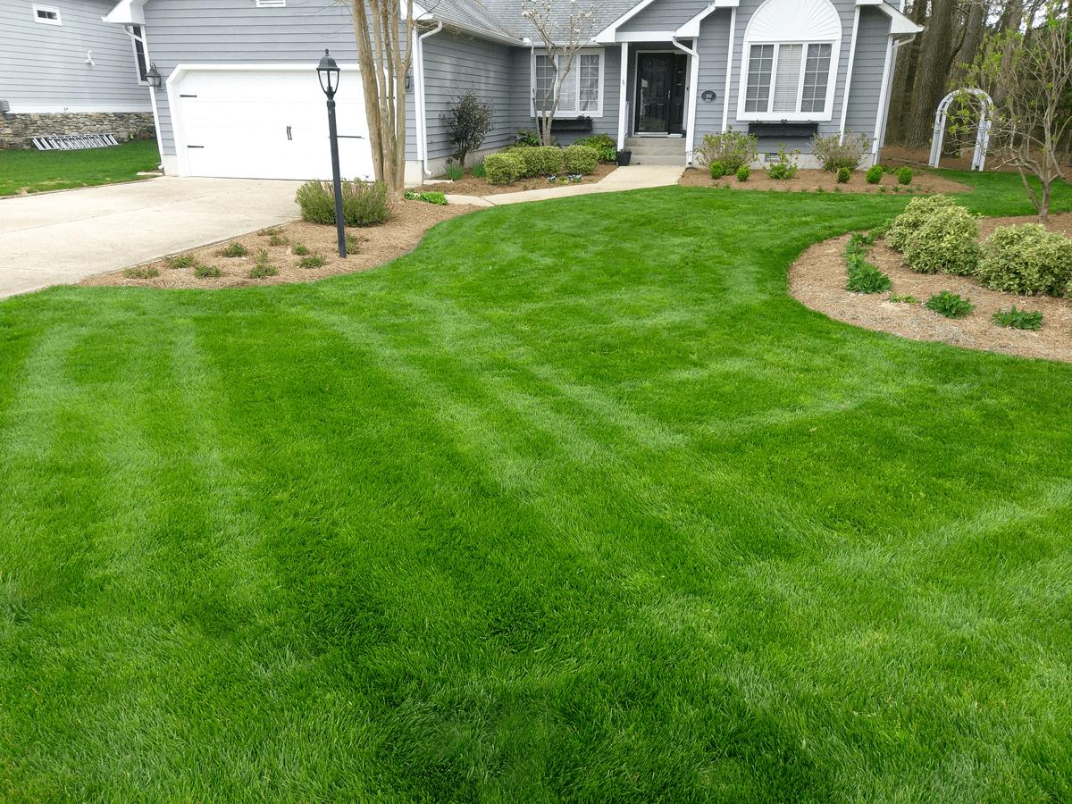 Enhance beauty of your Lawn landscape